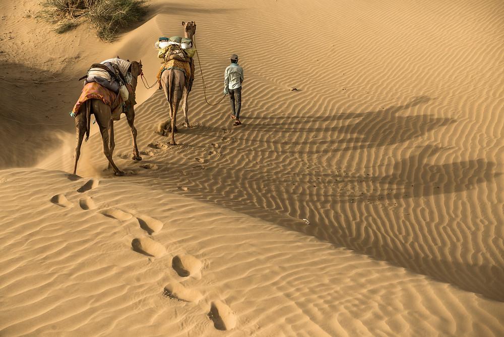 Desierto del Thar, Rajastan. India.