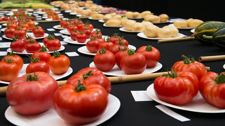 2021 Summer Horticultural Show
