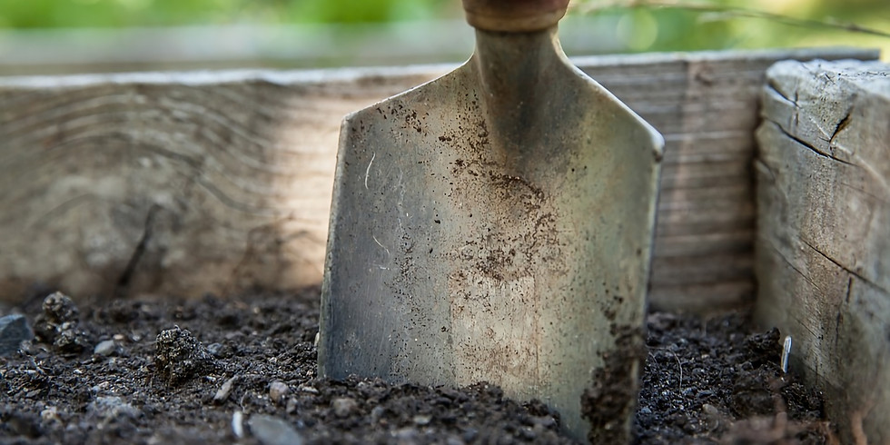 Online AGAS Talk: 'Raised beds, no-dig composting and one-handed garden tools' with Elizabeth Waterman