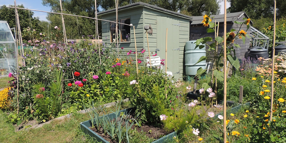 Allotments and Gardens Association Open Day