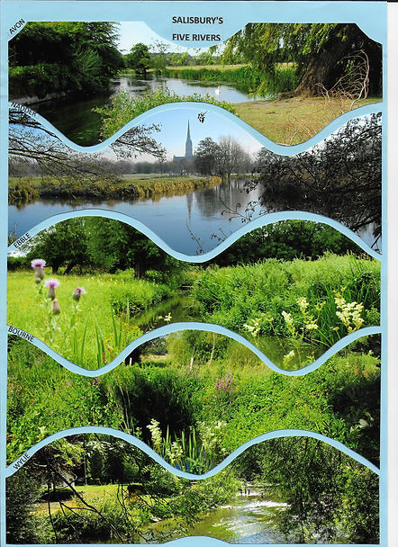 Five Rivers - 1st Prize - Sue Harris.jpg