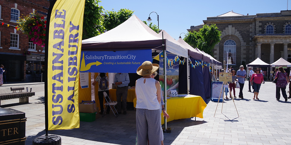 Sustainable Salisbury - Salisbury Transition City event
