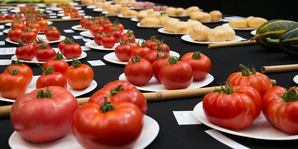 Summer Horticultural Show