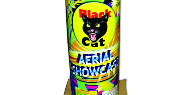 Aerial Showcase