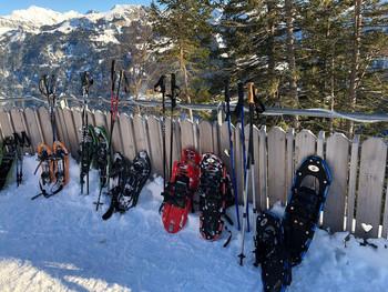 Impressionen der Schneeschuhtour im Gebiet Turren