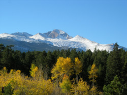 website photo winter longs with fall asp