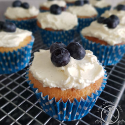 Low sugar, blueberry 2020 20200813_12205