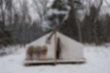 Snowshoe Algonquin Park