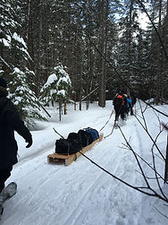 Snowshoeing Algonquin Park