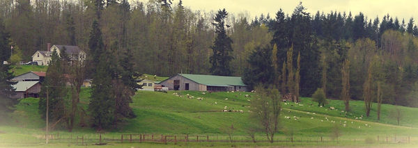 farm-vintage-e1413258876662.jpeg