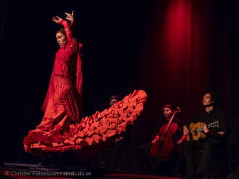 Josefine Chiacchiero - Trio el Gancho