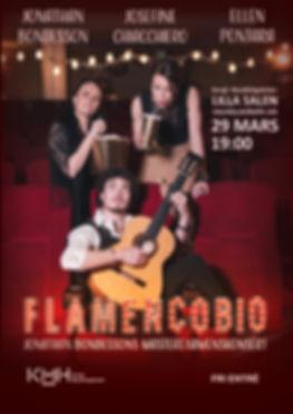 Flamencobio poster A3.jpg