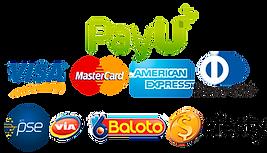 medios-de-pago-payu.png