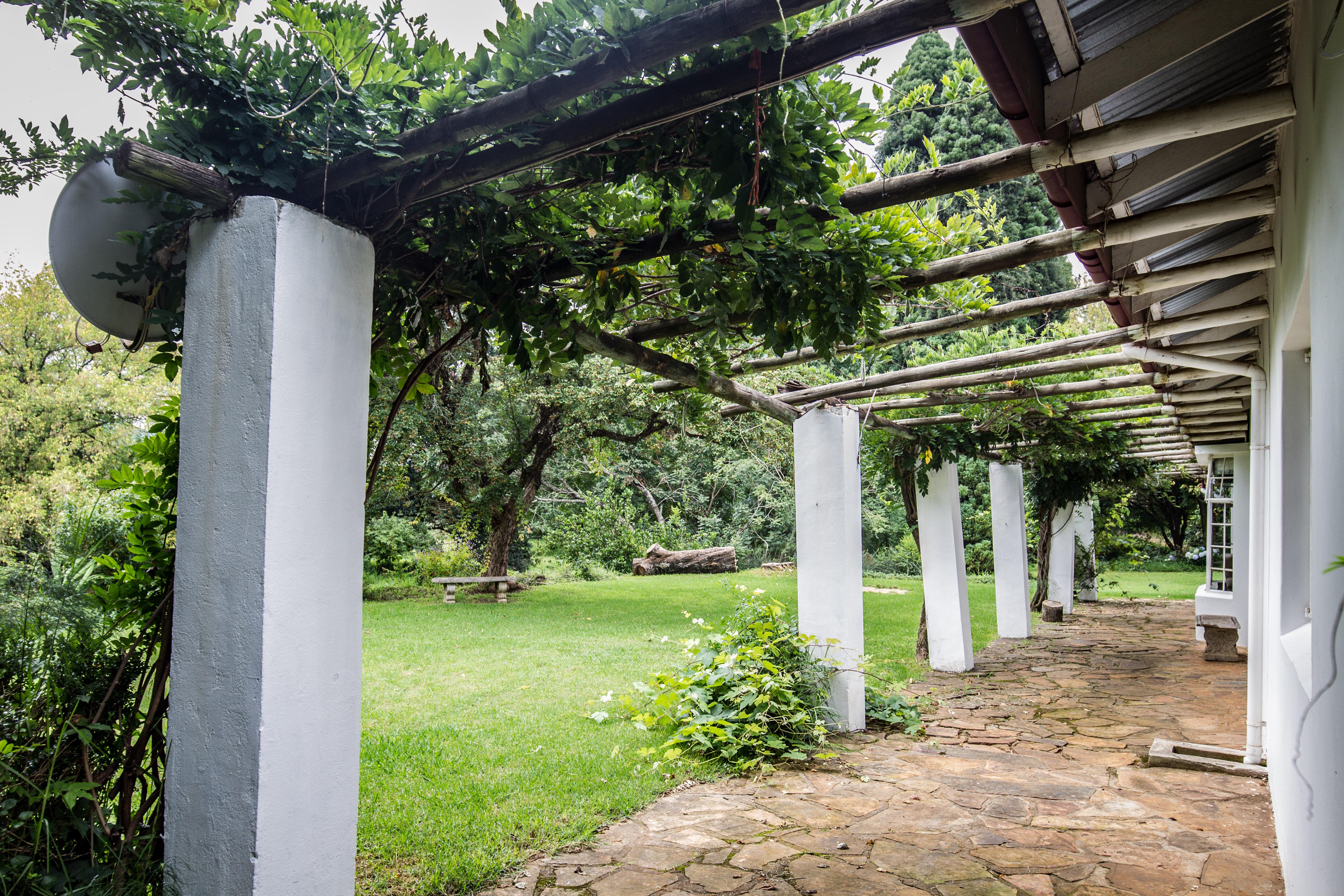 Wisteria Garden 6