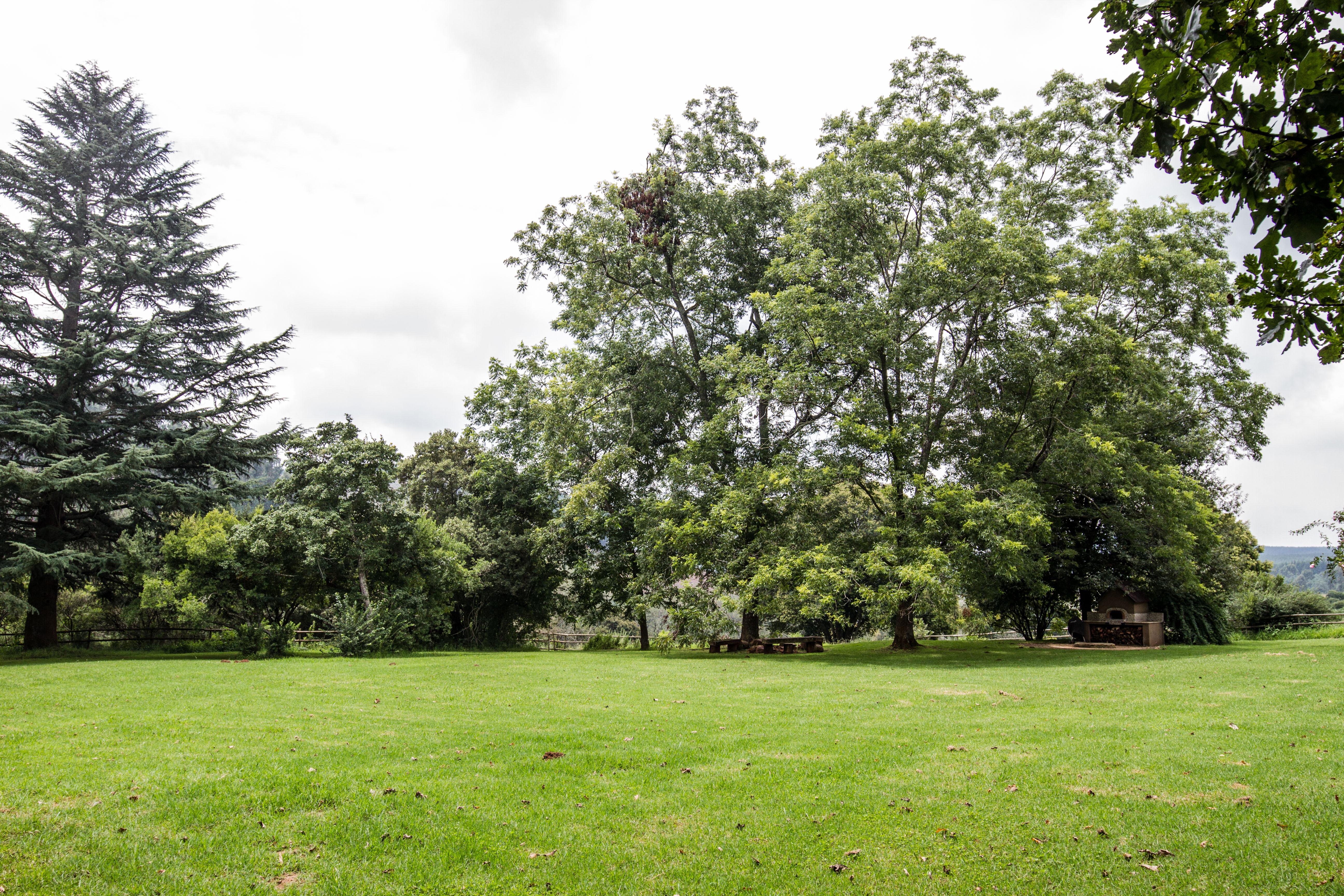 The Oaks Garden
