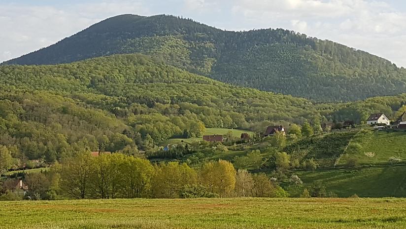 Ungersberg.jpg