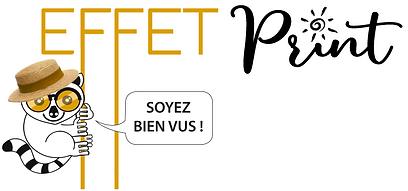 site_lemurien_ete.png