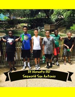 seaworld d1
