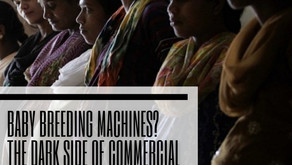 Baby Breeding Machines? The Dark Side of Commercial Surrogacy in India