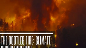 The Bootleg Fire: Climate Crisis Laid Bare