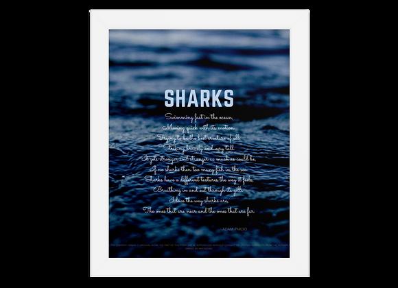 """""""Sharks"""" Framed Poster"""