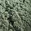 Thumbnail: Argile verte surfine  - 100 g