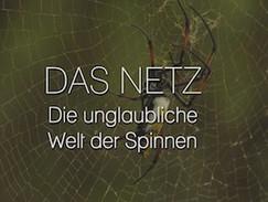 Das Netz - Die unglaubliche Welt der Spinnen (N24)