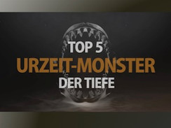 Top Five - Herrscher der Urzeit (N24)