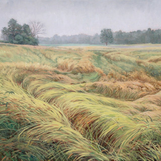 Field in Motion_47.5 x 36_oil on canvas_