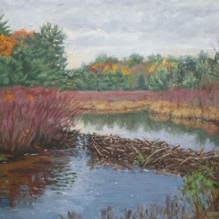 Beaver Dam at Potic Creek_sm.jpg