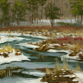 Potic Creek Winter Flow.jpg