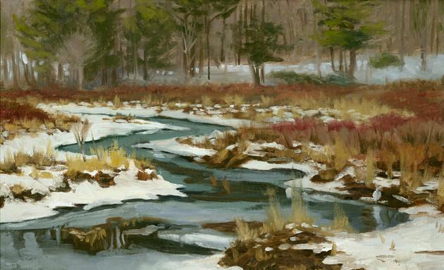 Potic Creek Winter Flow