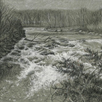 Raging_13.5x10.5_charcoal and pastel on