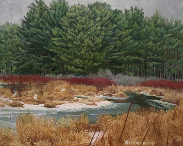 Pines at Potic Creek