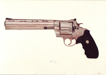 Colt Anaconda Stainless 8
