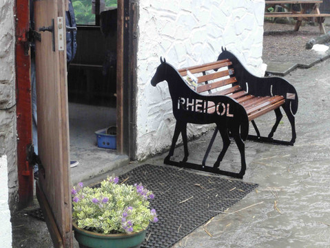 Horse Bench at Rheidol