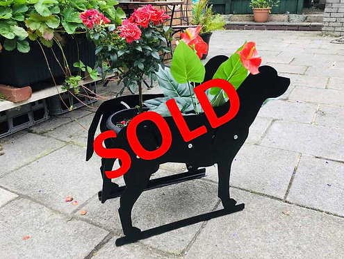 Labrador Themed Flowerpot Planter