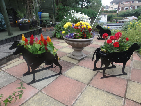 Animal Theme Planters