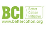 BCI Logo resized_1.png
