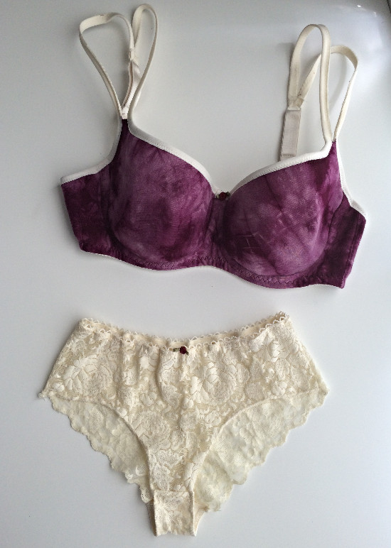 Winter Wild Rose Bra