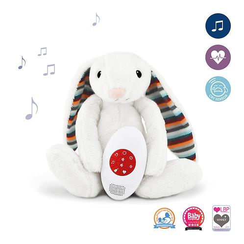 צעצוע רך מוסיקלי - BIBI