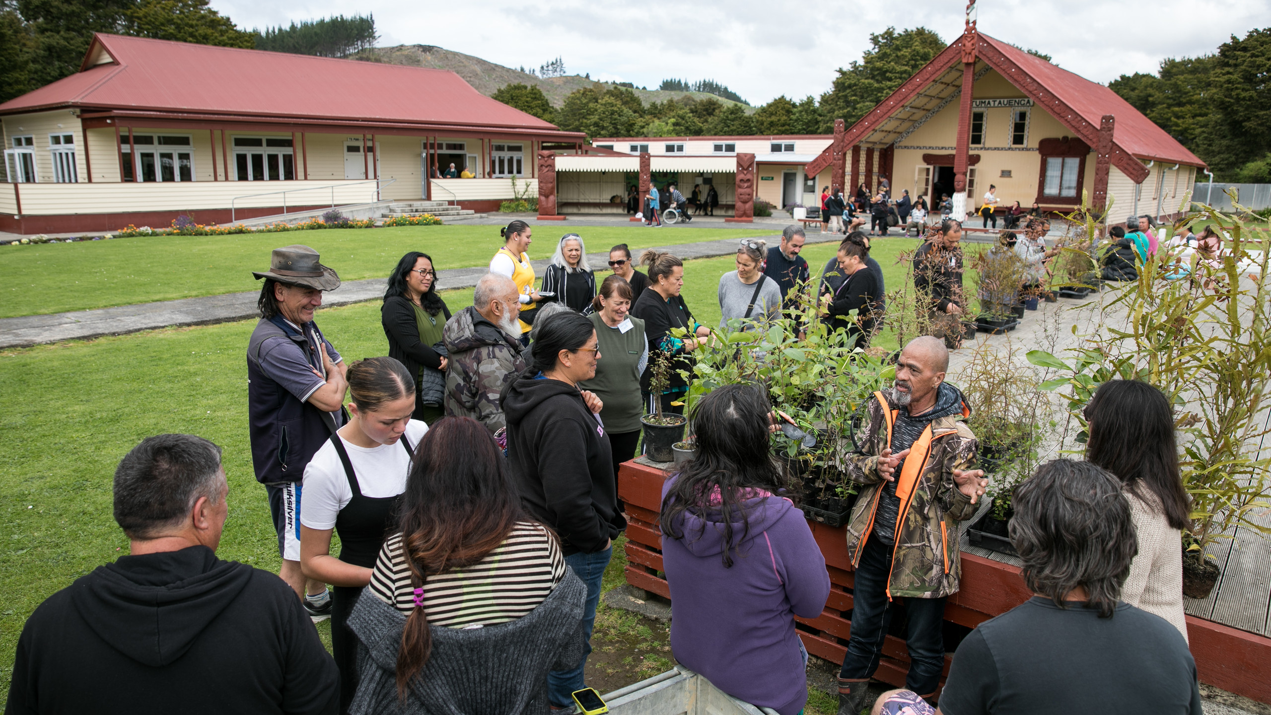 Wānanga Rākau Rongoā Māori