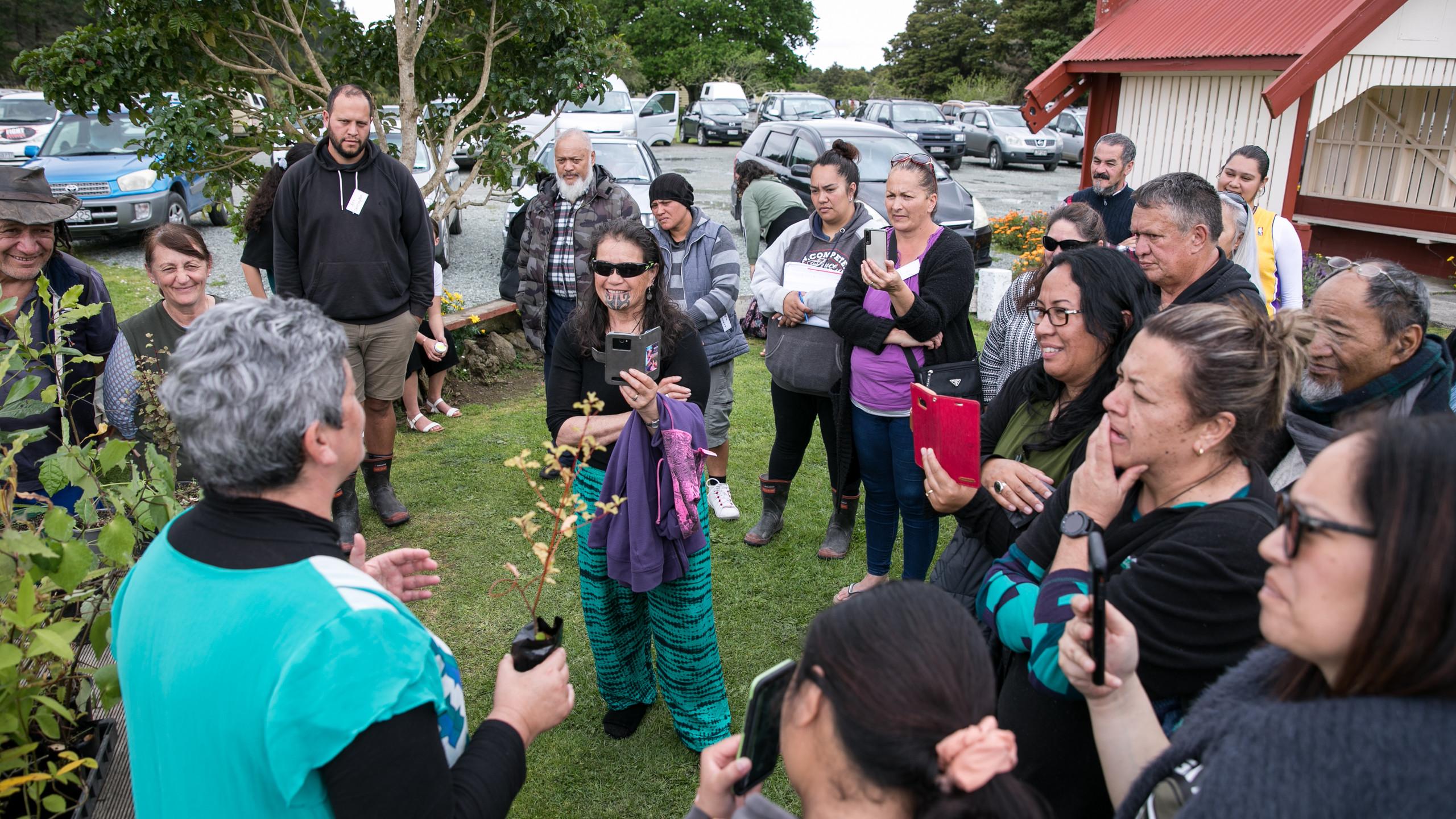 Donna Kerridge - Kāhui Rongoa NZ