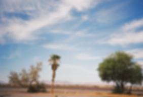 1_IMG00027 (California).tif