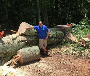 Tree removal Kennesaw, Ga