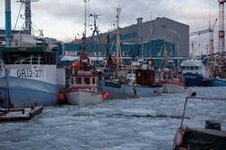 Ilulissat 20071029-7.jpg