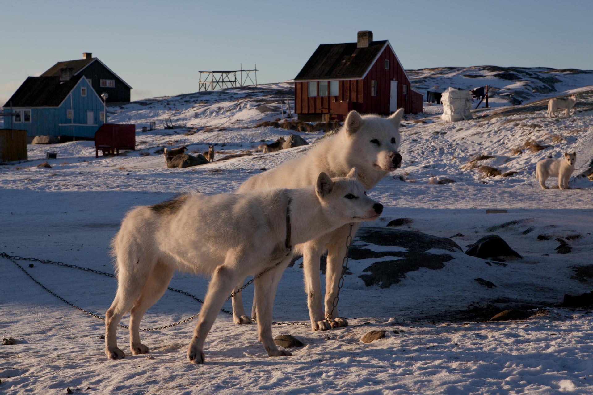 Ilulissat 20071027-133.jpg