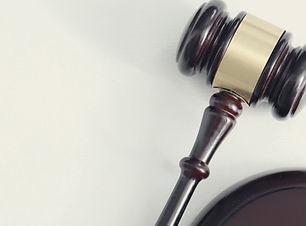 Divorce Lawyer Diksha Mehan Sharma, Appeals