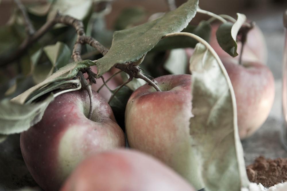 Äpfel für den besten Apfelkuchen der Welt