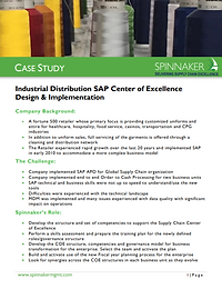 Industrial Dist SAP Center of Excellence